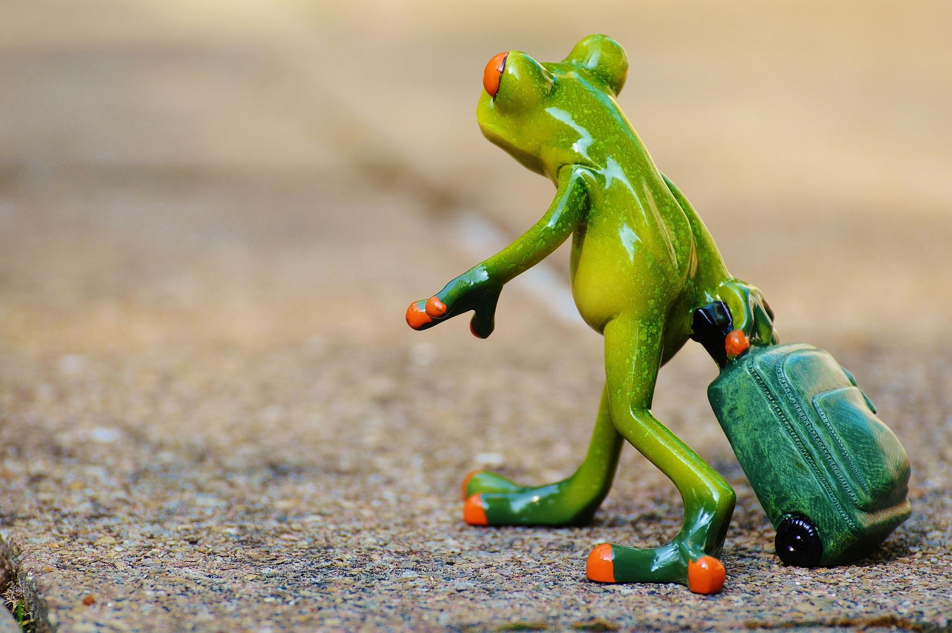 Frosch mit Rollkoffer