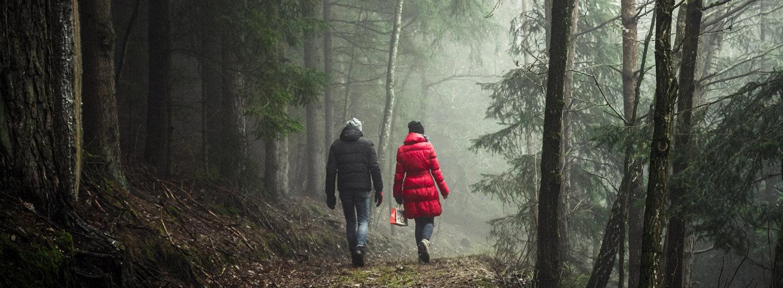 2 Menschen gehen gemeinsam durch einen dunklen Wald